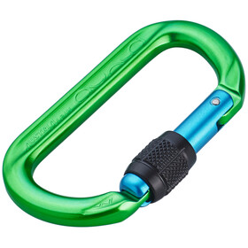 AustriAlpin Ovalo Edition Screwgate Carabiner green-blue anodized